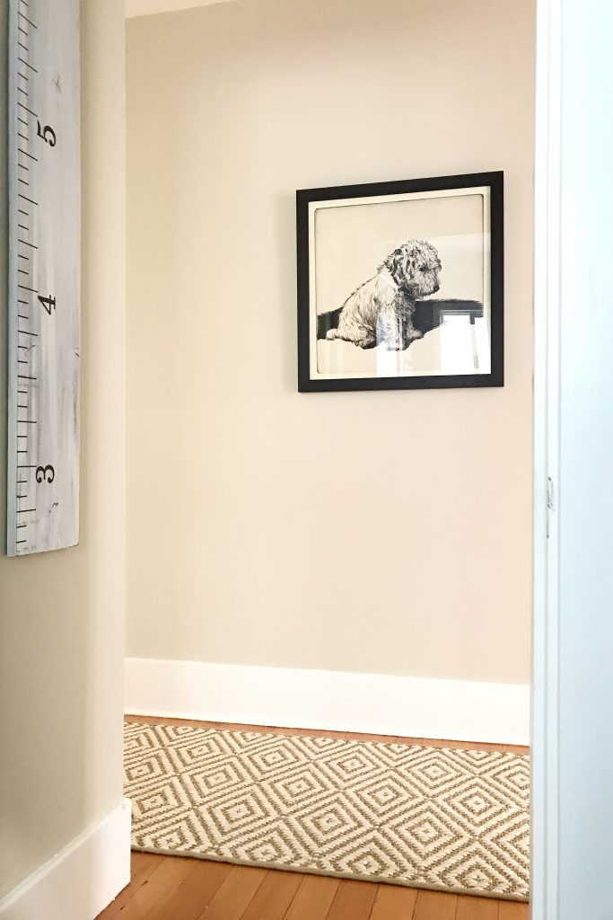 Hallway area with jute rug and dog artwork