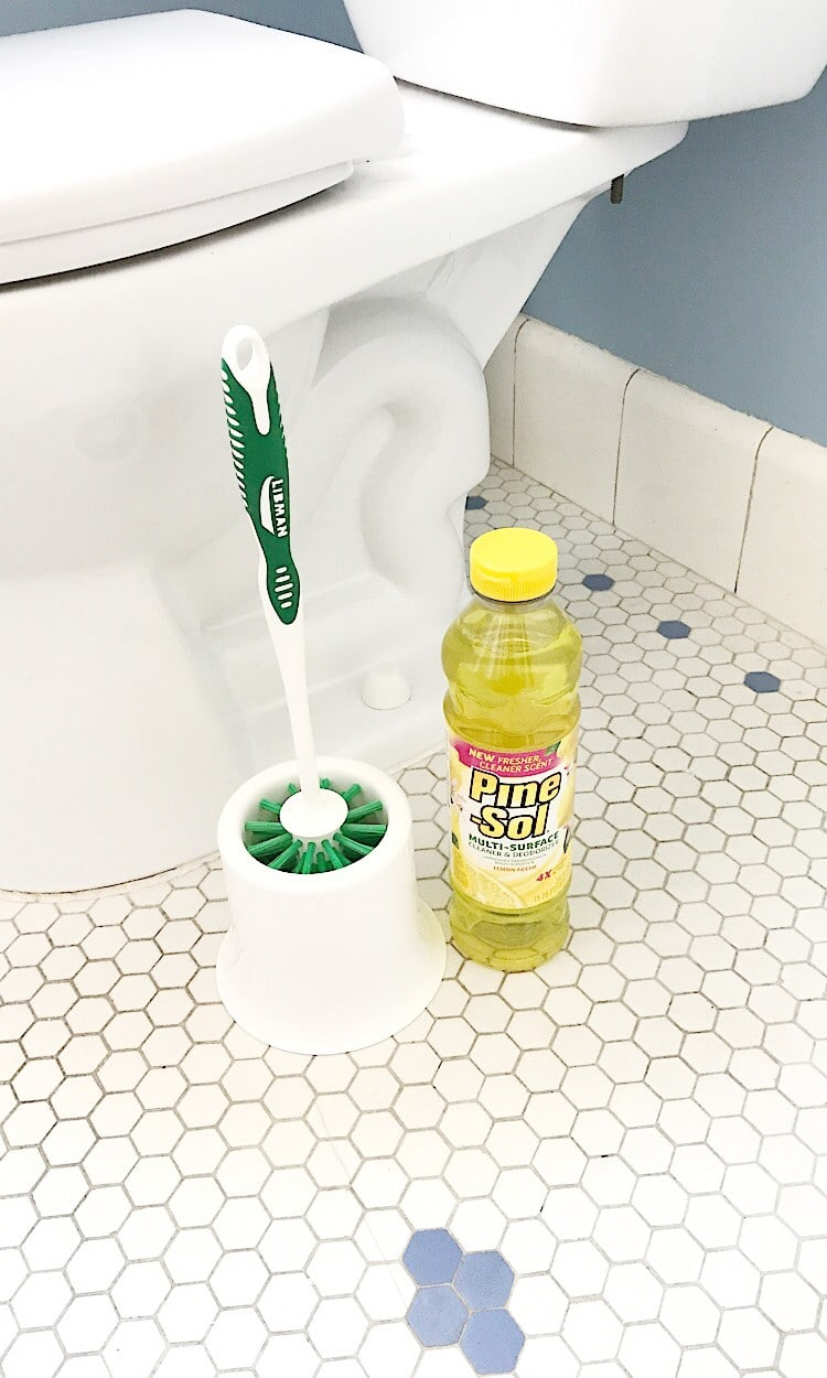 Put Pinesol in the bottom of your toilet brush holder