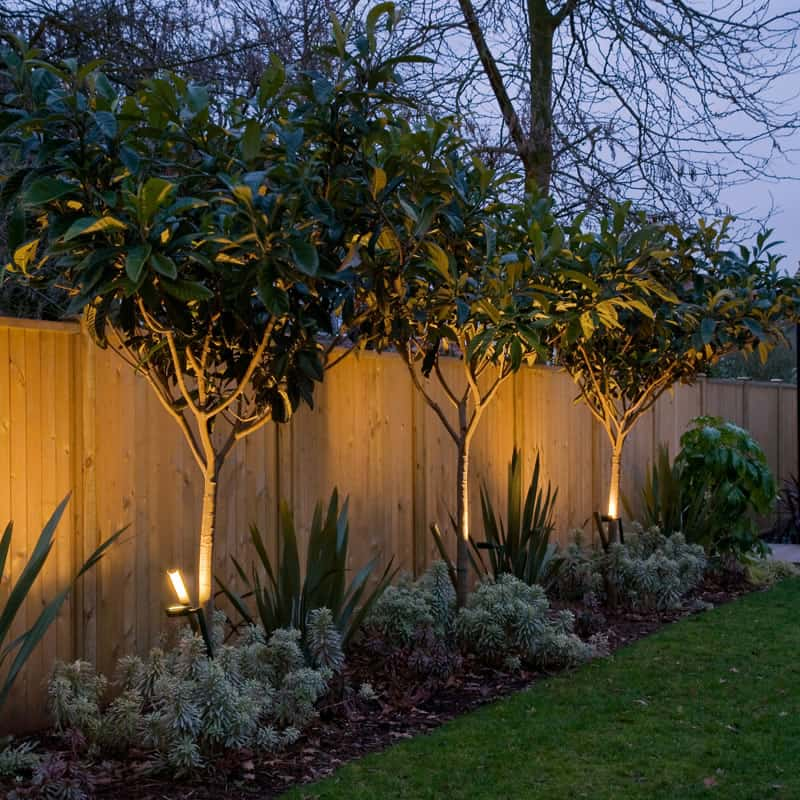 Concrete Walkway Project : Landscaping Ideas