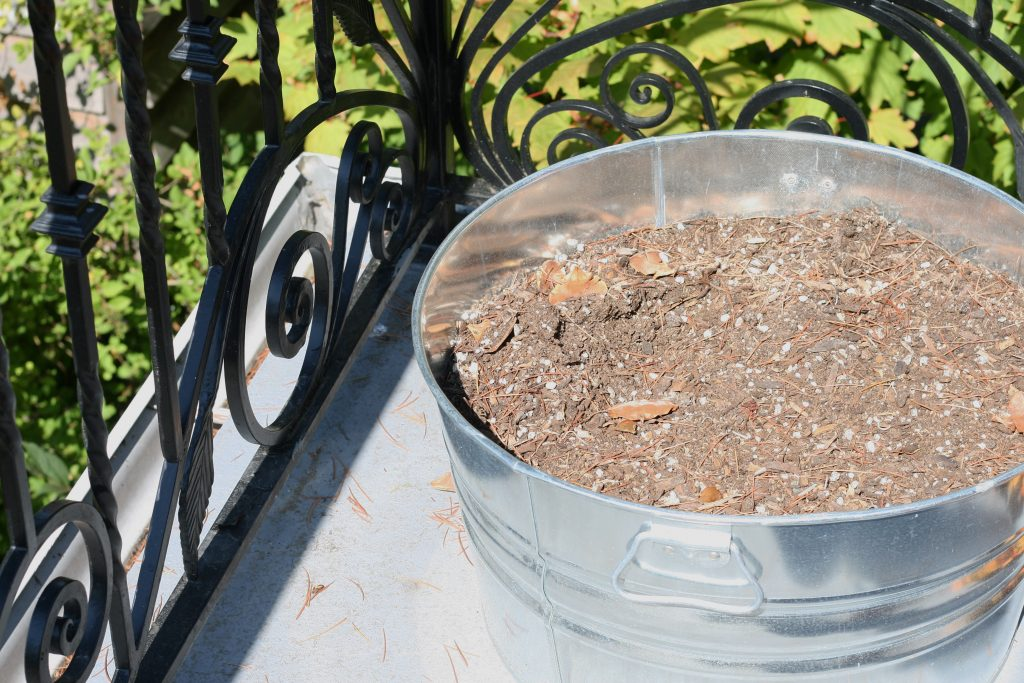 Here's a simple fall planter idea for you. It's ridiculously easy to put together!