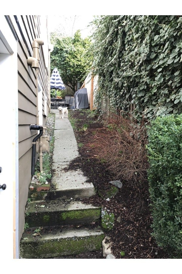The Before - our old concrete walkway.