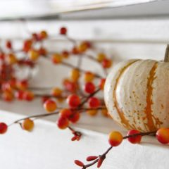 Welcome to Fall Around Our House : Simple Fall Home Decor