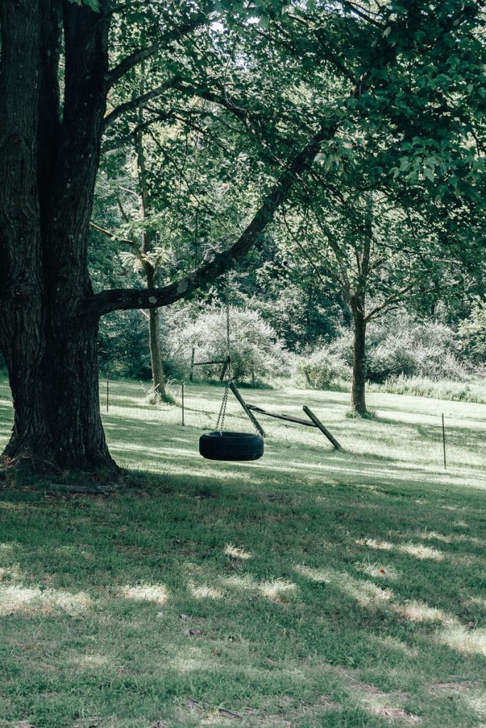 Tire Swing hanging from tree