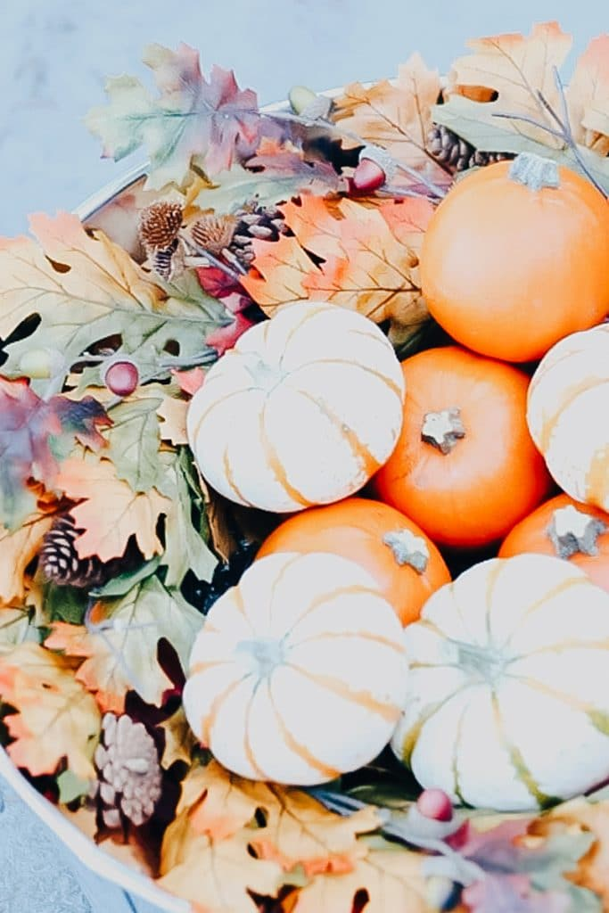 All the Fall Feels - I'm sharing all this Fall goodness with you. These photos are giving me all the fall feels.