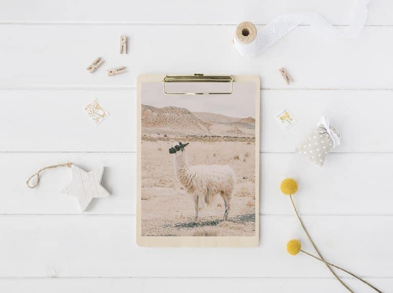 Free Llama Printable Art
