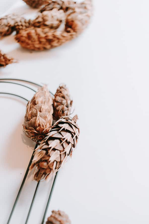Place pinecones on wreath form