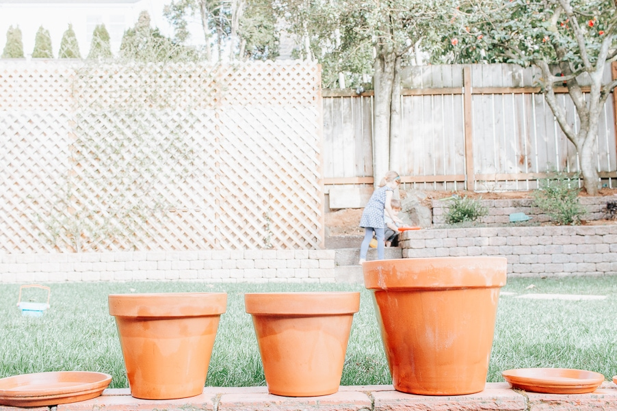 How to Clean Terracotta Pots - let them dry in the sun