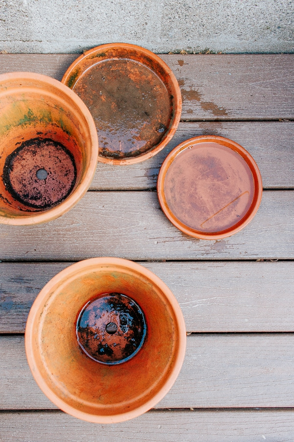 Dirty Terracotta pots - get them ready for Spring planting