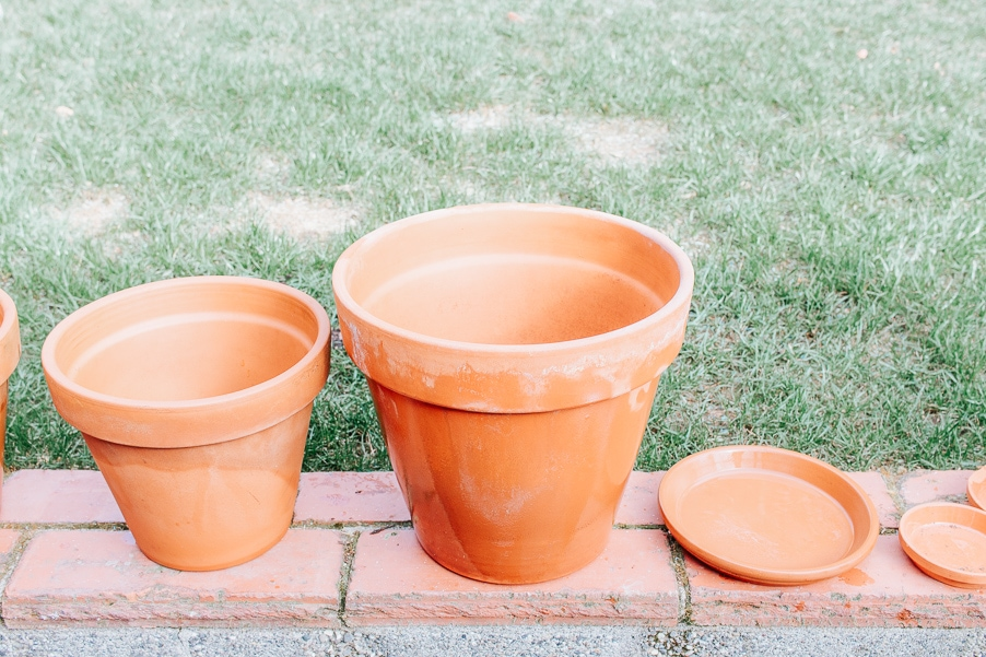How to Clean Terracotta Pots