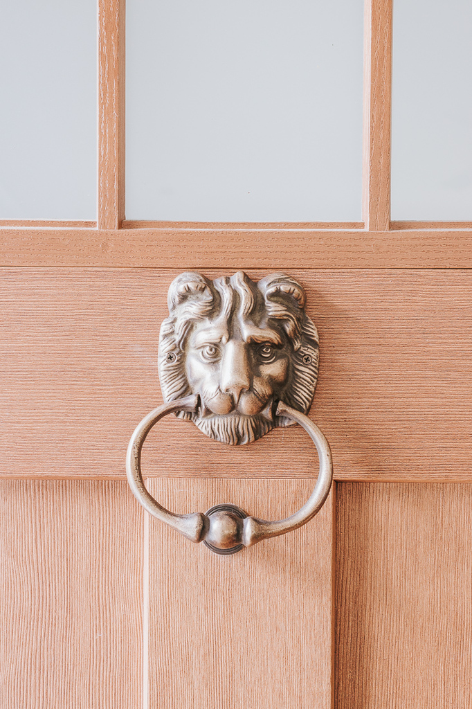 vintage lion doorknocker - inexpensive home decor finds from Amazon and other stores!  Check out this post! #homedecorideas