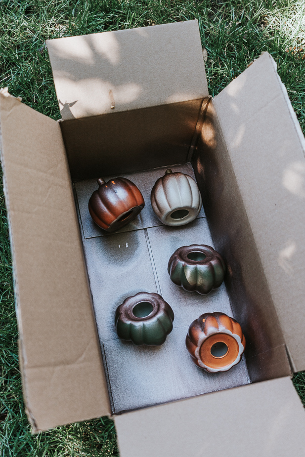 spray paint pumpkins in an old box to contain mess