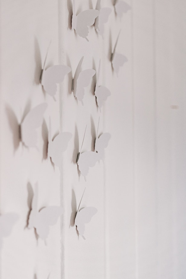 3D Butterflies on Wall