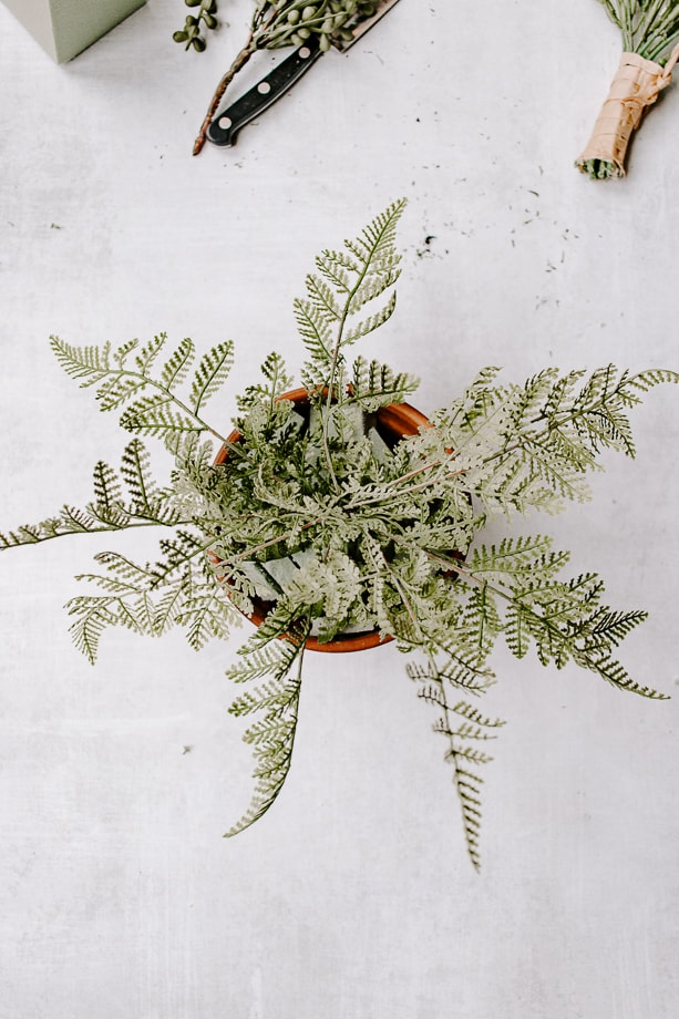aerial view of a faux potted fern
