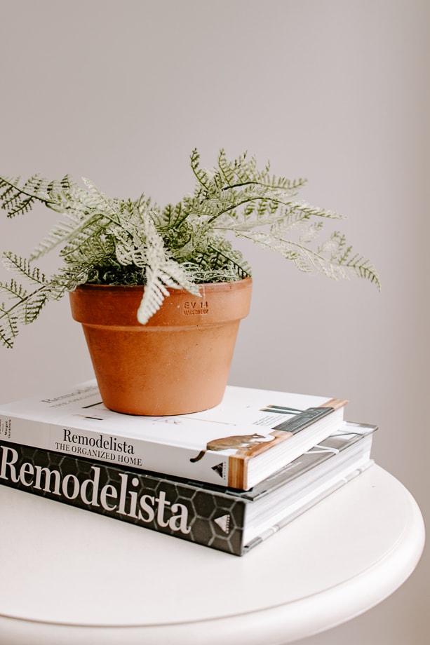 faux fern in a terracotta pot