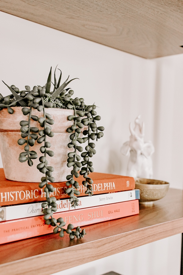 a plant on top of a stack of books
