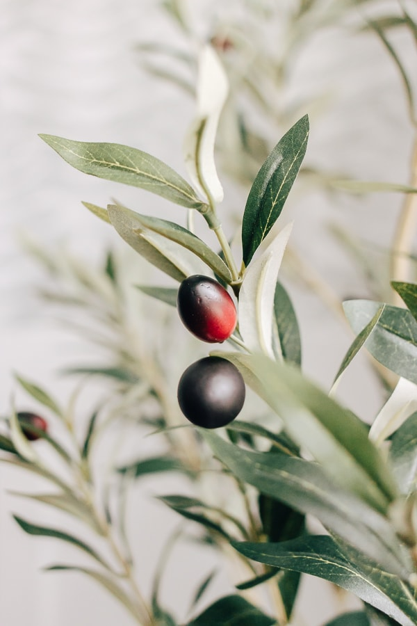 close up of faux olives and leaves on olive ree