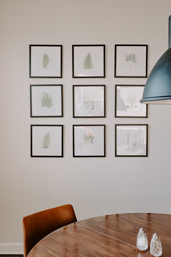 free botanical prints - set of 9 fern prints in black frames on wall