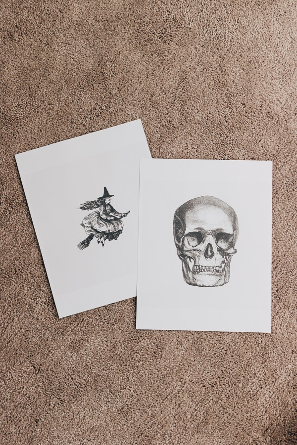 printed skull and witch for halloween