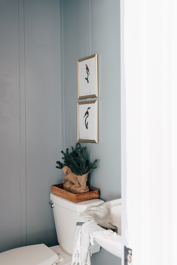 blue bathroom with bird photos hanging above toilet