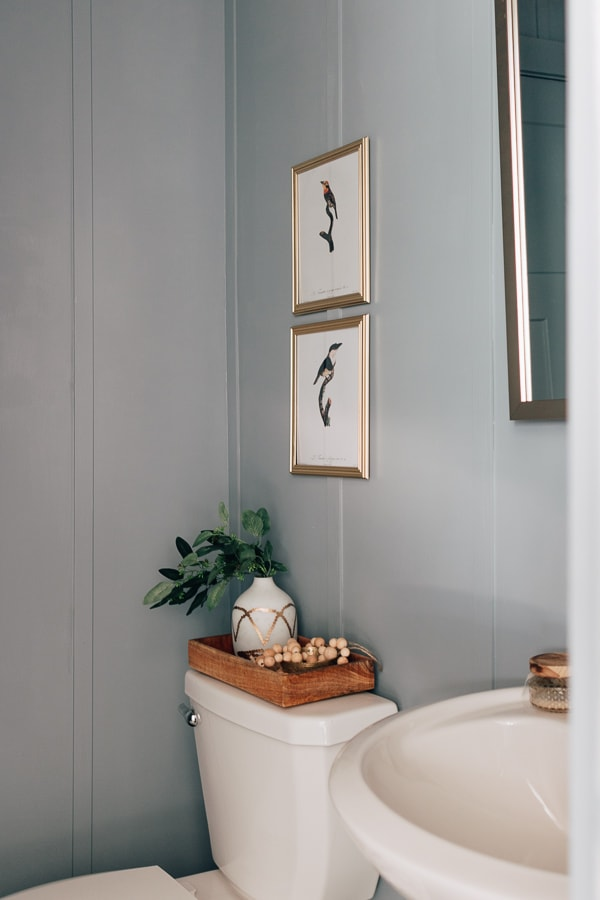 Blue Bathroom with board and batten wall