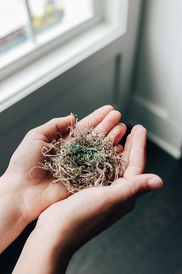 LIttle Handmade Bird Nests for Easter Tree