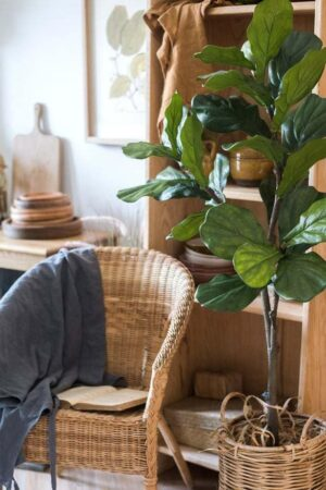 best faux fiddle leaf fig trees - get the latest on the best and most realistc faux fiddle leaf fig trees in post!